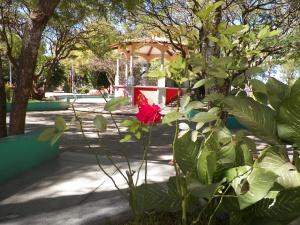 Loo Sbí na Santa María Coyotepec